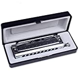 Swan SW1040 10 Hole 40 Tone C Key Chromatic Harmonica Adult Students Beginners Entry Professional Playing Variable Tone Instrument