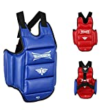 Twister Reversible(Blue/RED) Chest Guard Protector for Karate,Taekwondo Muay Thai (X-Large)