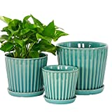 Fengson Succulent Plant Pots,7+5.8+4.6 inch Ceramic Flower Pot with Drainage Holes and Connected Ceramic Tray,Indoor-Outdoor Small to Large Sized Round Orchid Planter,Set of 3,Light Green