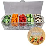 Evelots Ice Chilled Condiment Tray-5 Removable Compartments-Lid-2 Cup Containers