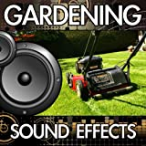 Ride-On Lawn Mower (Cutting Grass) [Lawnmower Mowing] [Version 2]