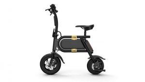 Fluxx MW1 Folding Electric Bike