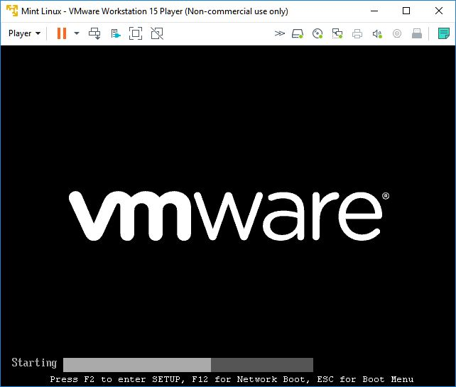 vmware workstation player mint linux automatic booting